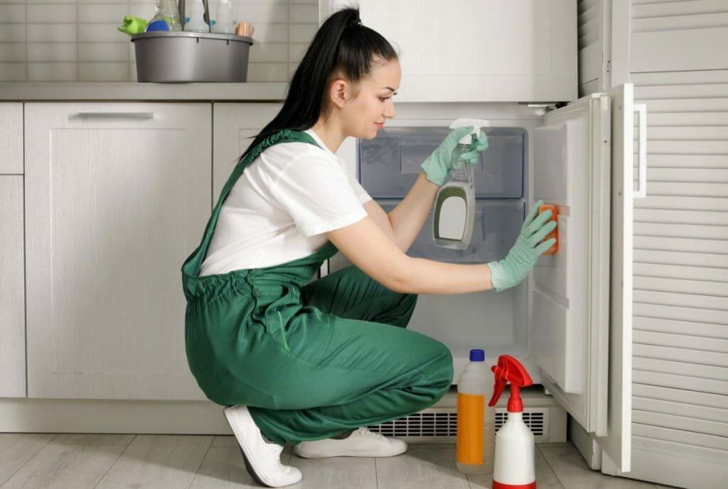 clean rv fridge
